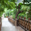 Wooden footbridge throught garden — Stock Photo #11183150