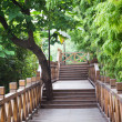 Wooden footbridge throught bamboo garden — Stock Photo #11183155