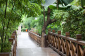 Wooden footbridge throught garden — Stock Photo