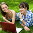 Two attractive girls with a laptop in the park — Stock Photo #11152848