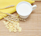 Grain cereal with milk — Stock Photo