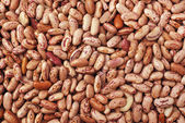 Beans texture — Stock Photo