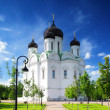Russian Church in Pishkin, St. Petersburg. — Stock Photo #11640287