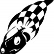Checkered flag - symbol racing — Vettoriali Stock