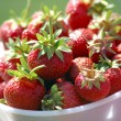 Fresh picked strawberries — Stock Photo #10750459