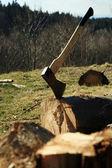Holzfäller-geräte - ax — Stockfoto