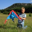 Royalty-Free Stock Photo: Boy made kite