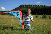 Boy made kite — Stock Photo