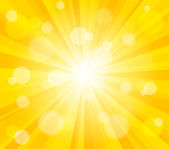 Bright vector sun effect background — Vector de stock