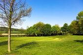 Campo de golfe — Fotografia Stock