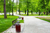 Avenue in the green park — Stock Photo