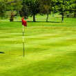 Golf field — Foto de Stock