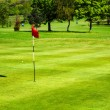 Golf field — Stock Photo #10961632