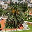 Gardens in Haifa Israel — Stock Photo