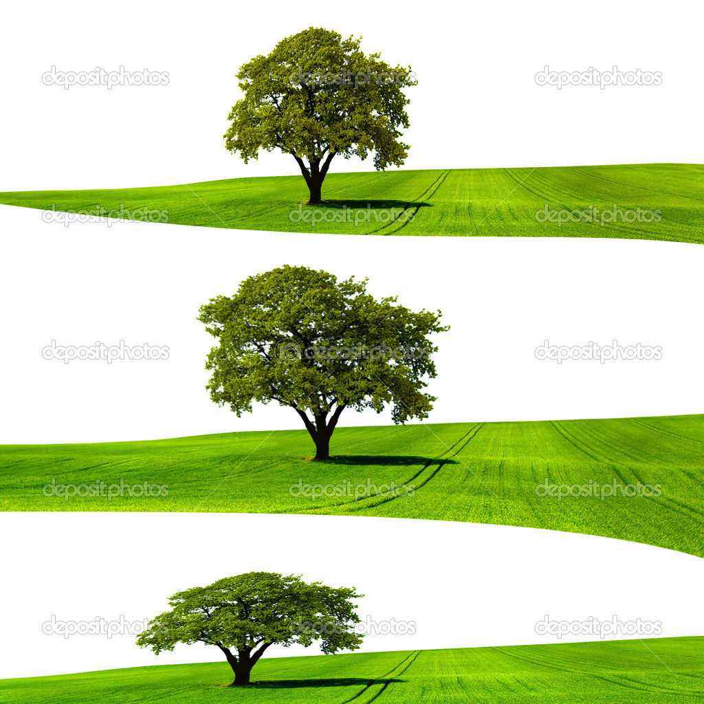 Ecological Structure — Stock Photo #11057423