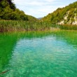 Stock Photo: Plitvice Lakes National Park