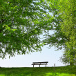 Stock Photo: Green Park Bench