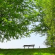 Green Park Bench — Stock Photo