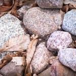 Stones — Stock Photo #10867805
