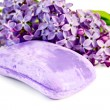 Soap violet with lilac — Stock Photo #11136869