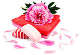 Soap with a towel and a pion — Stock Photo