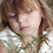 Portrait of beautiful little girl with the field flowers - Stock Photo
