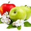 Two Green Apple and Red Apples with flowers, Leaf and water drop — Stock Photo