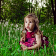 Beautiful little girl on a lawn with dandelions — Stock Photo #11302591