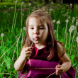 Beautiful little girl on a lawn with dandelions — Stock Photo #11302667