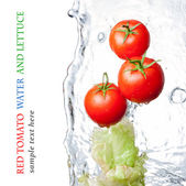 Rinsed tomatoes and lettuce — Stock Photo