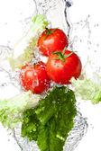 Tres rojo tomate y lechuga en salpicaduras de agua aislados en — Foto de Stock