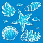 Sea shells drawings 2 — Stock Vector #10907674
