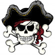 Vintage pirate skull theme 1 — Stock Vector