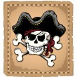 Vintage pirate skull theme 2 - Stock Vector