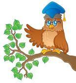 Owl teacher theme image 1 — Stock Vector