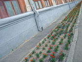 Abstract flower line near industrial building, environment. — Stock Photo