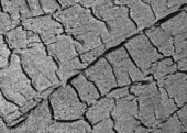 Carbonized wooden texture closeup, stress environment. — Stockfoto