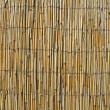 Abstract yellow bamboo wall, construction details. — Stock Photo