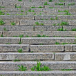 Stone staircase with green grass between granite stones. — Stock Photo