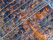 Abstract red grilled fish cooking with metal grid, picnic. — Stock Photo