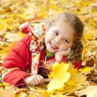 Child in autumn park. — Stock Photo #11233597