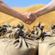 Farmers hands at sack with harvest wheat bakcground. — Stock Photo