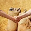 Farmers handshake at sacks background. - 图库照片