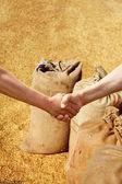 Farmers handshake at sacks background. — Stock Photo