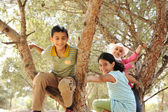 Children playing and climbing the tree — Stock Photo