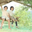 Children sitting on a branch of a tree — Stok fotoğraf