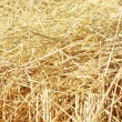 Closeup of straw texture on field — Stock Photo