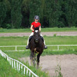 Equestrian sport - Stock Photo