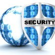 Earth and shield security — Stock Photo