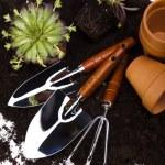 Garden tools concept — Stock Photo #11279984
